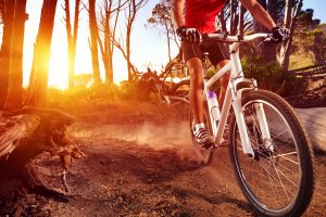 bicycle accident attorney the woodlands, tx